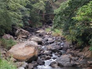 The river Barranca near our home